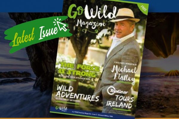 Editor for Go Wild Magazine